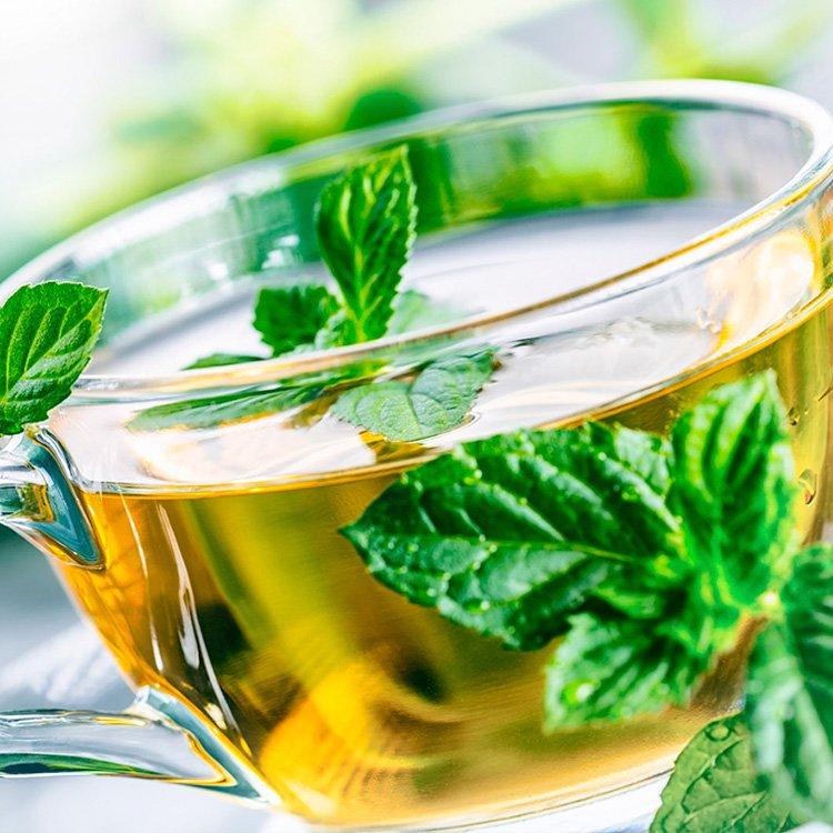 Las Mejores Hierbas Y Especias Para Desinflamar El Estómago   La Guía de las Vitaminas