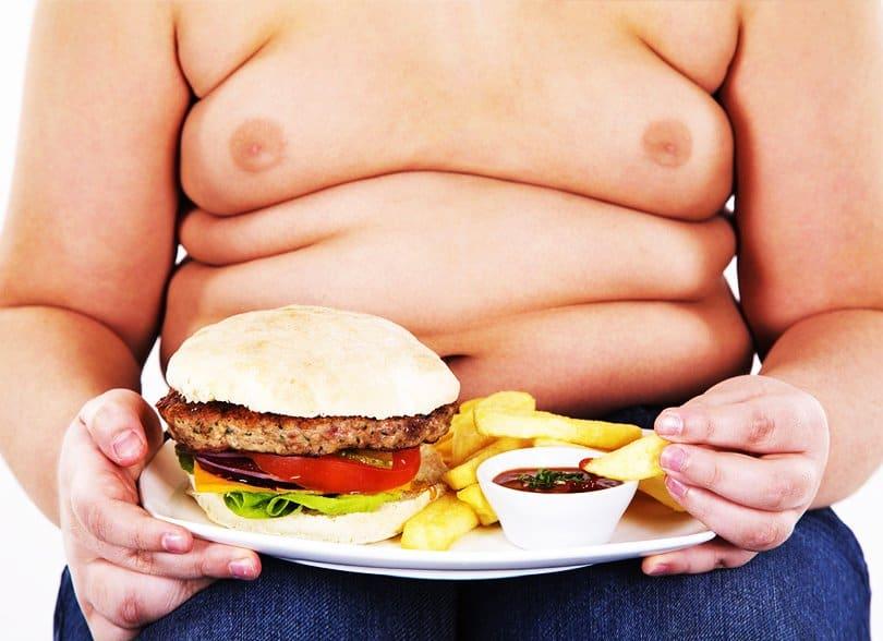 5 Graves Consecuencias de la Comida Chatarra en Adolescentes   La Guía de las Vitaminas