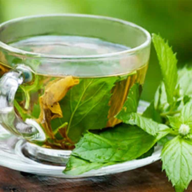 Agua de Hierbabuena Para Hacer Detox en Ayunas Y Tener Un Vientre Plano   La Guía de las Vitaminas