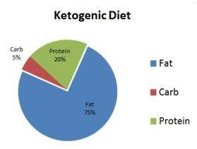 Los 8 Tipos De Dieta Cetogénica: ¿Cuál es la Mejor Para ti?   La Guía de las Vitaminas