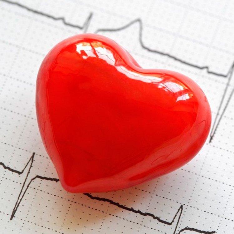 5 Tácticas Para Bajar El Colesterol Rápidamente   La Guía de las Vitaminas