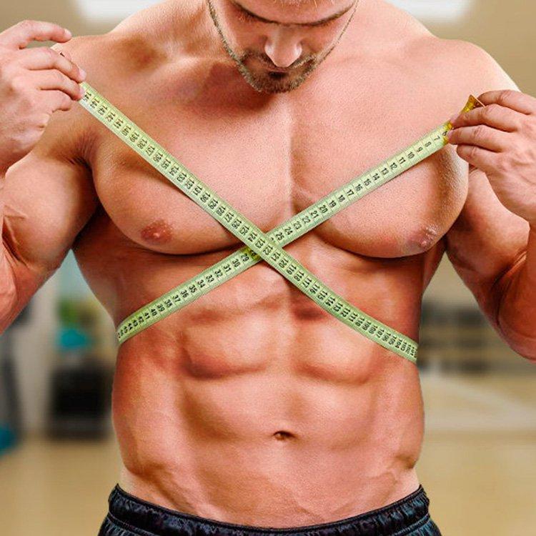 Tipos De Cuerpo: Ectomorfo, Endomorfo Y Mesomorfo   Explicados Paso a Paso   La Guía de las Vitaminas