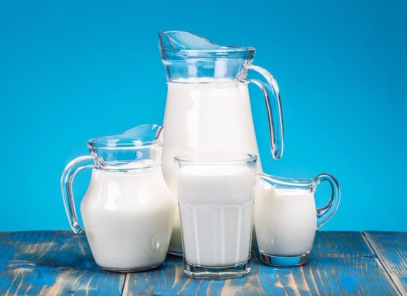 ¿La Leche De Vaca Es Buena O Mala?   La Guía de las Vitaminas