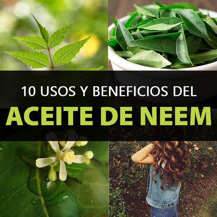 10 Usos y Beneficios Del Aceite De Neem, Y Efectos Secundarios.   La Guía de las Vitaminas